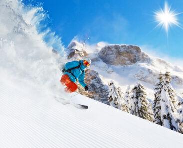 Skiier Web